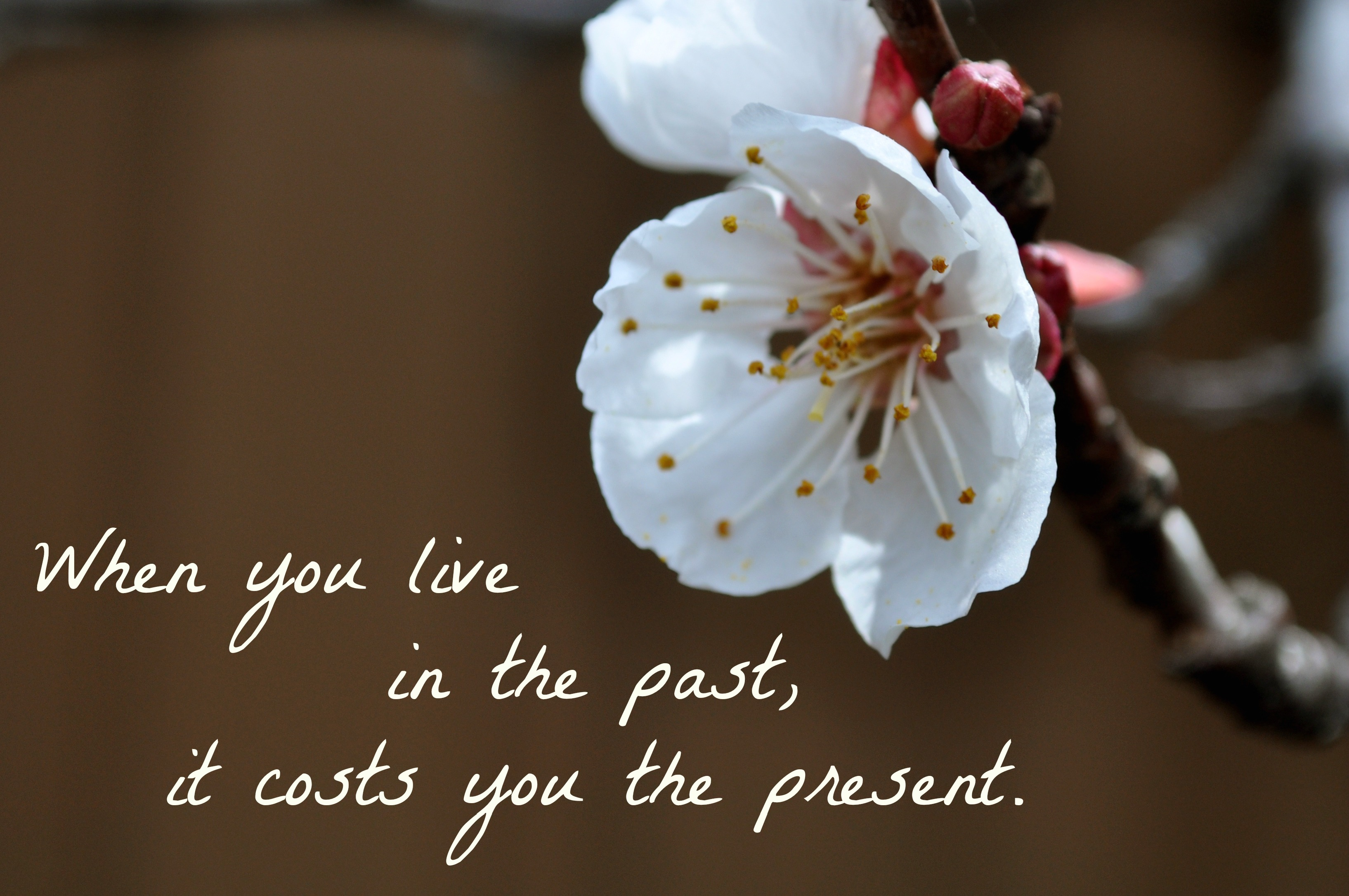 Sunday Thoughts – Living in the past