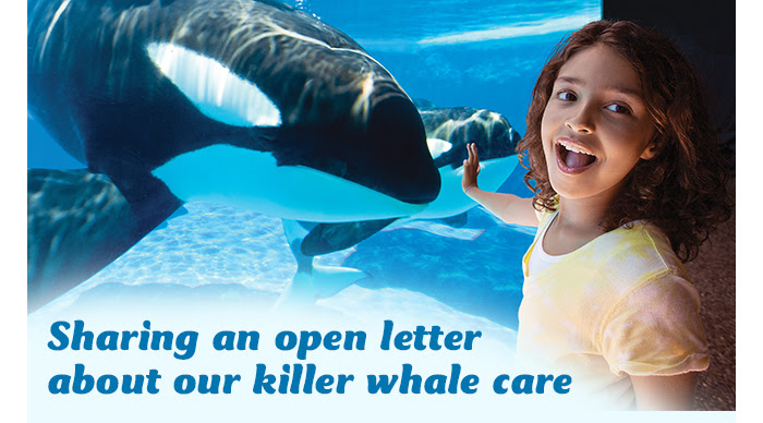A Letter from SeaWorld