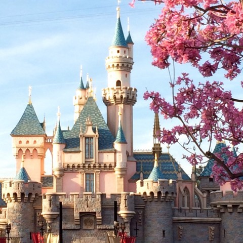Sleeping Beauty's Castle - Simple Sojourns