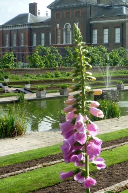 Kensington Gardens - Simple Sojourns