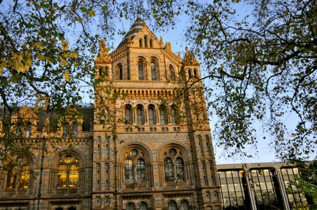 The Natural History Museum - Simple Sojourns