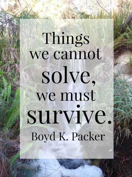 Things We Cannot Solve