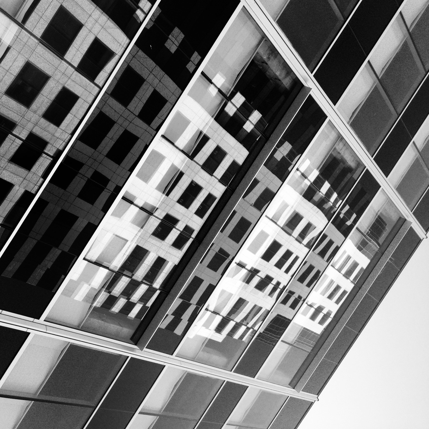 Reflections of Downtown LA