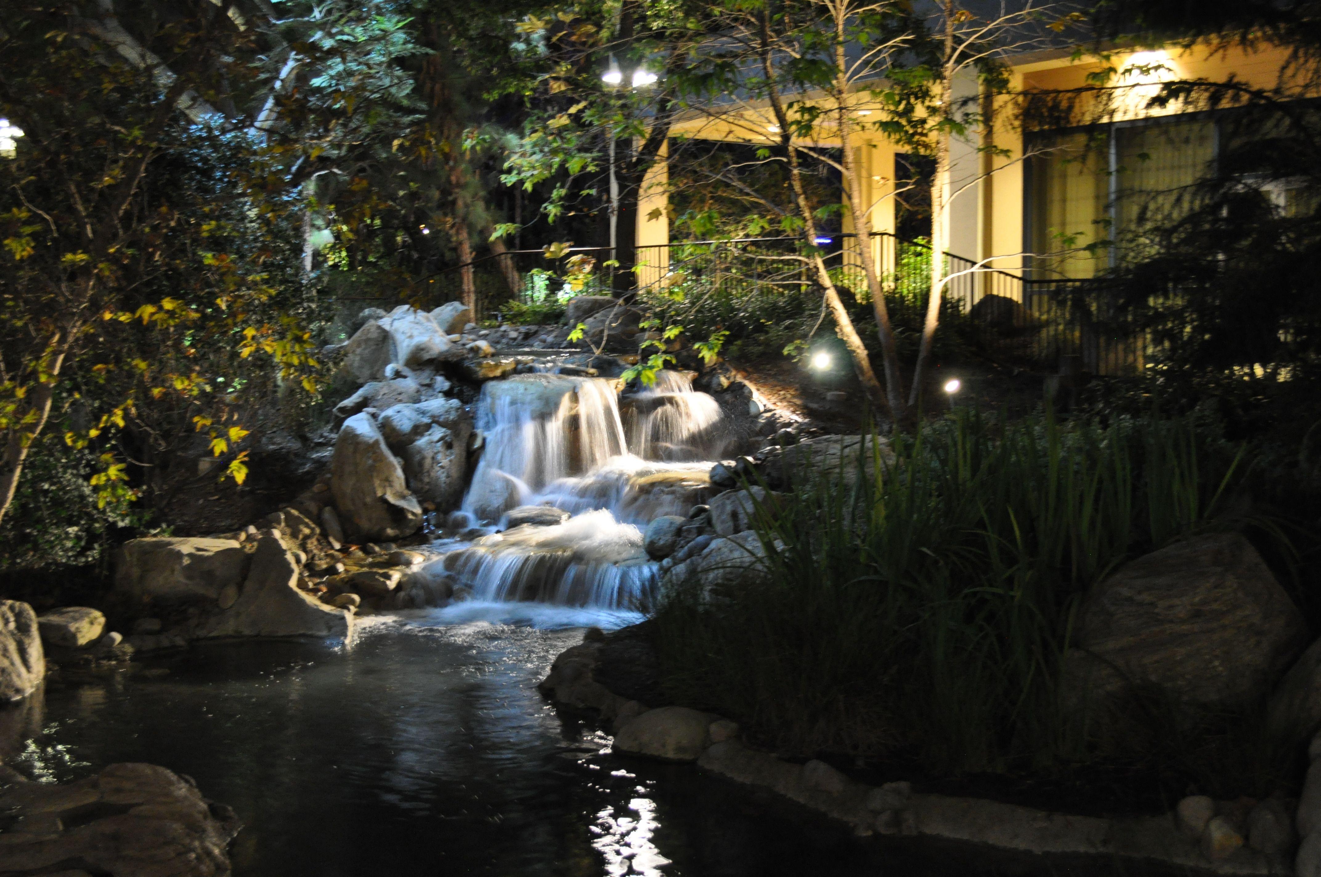 Disneyland Hotel Gardens