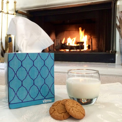 Kleenex and Cookies - Simple Sojourns