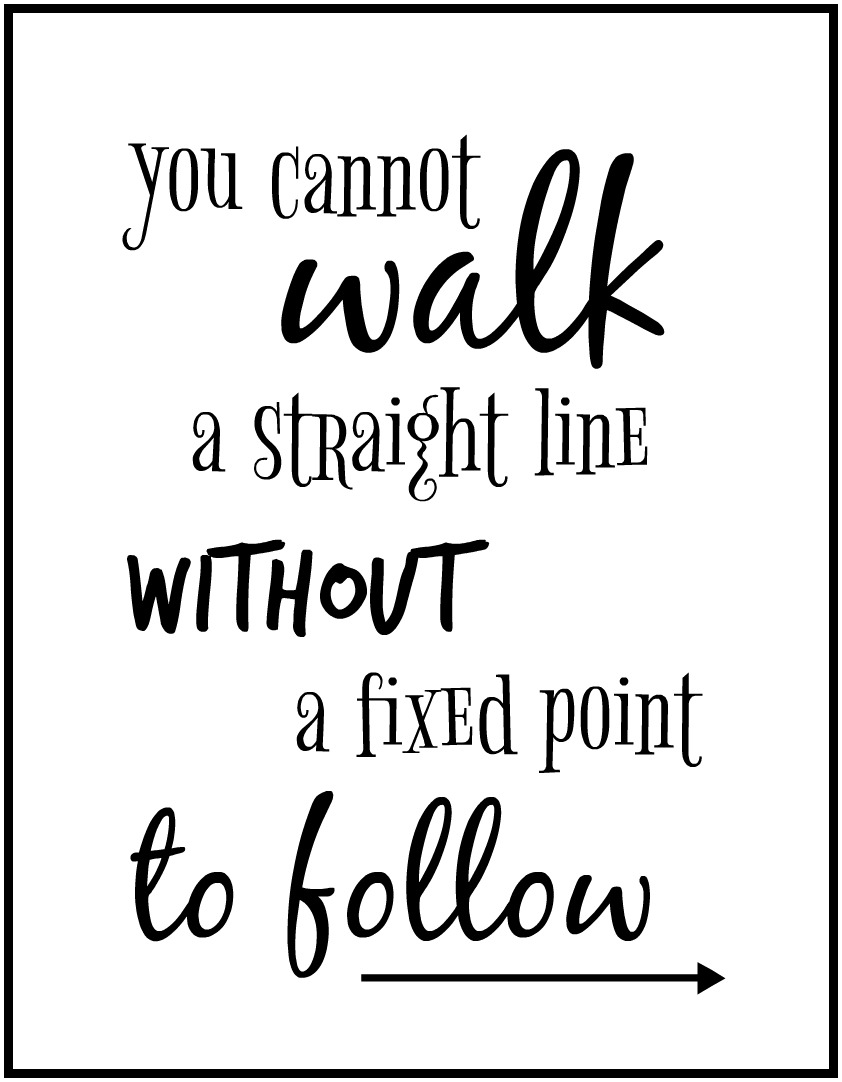 You Cannot Walk a Straight Line Without a Fixed Point to Follow